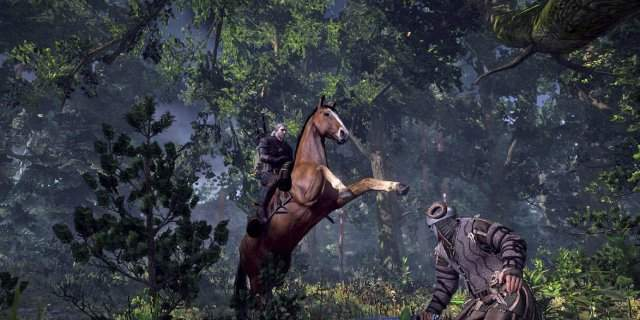 ����� ������� The Witcher 3: Wild Hunt �� The Game Awards 2014